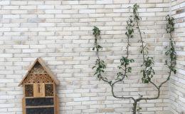 briqueterie_dewullf-allonne-terre-cuite-brique-blanche-ecole-paris (15)